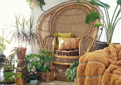 rattan chair surrounded by plants