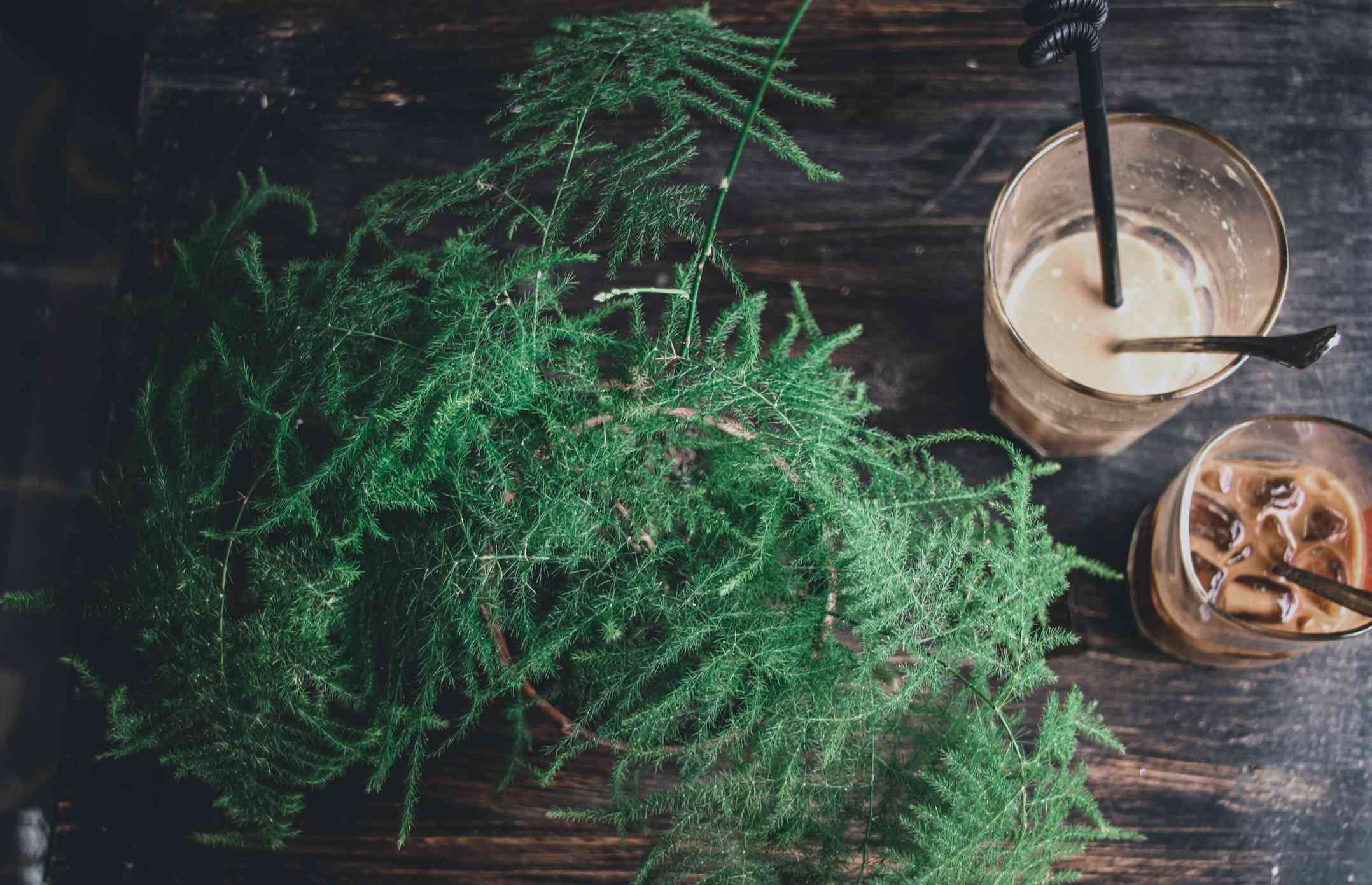 overhead view of asparagus fern and coffee drinks on wood table