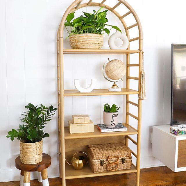 zz plant on stool next to a boho styled bookshelf
