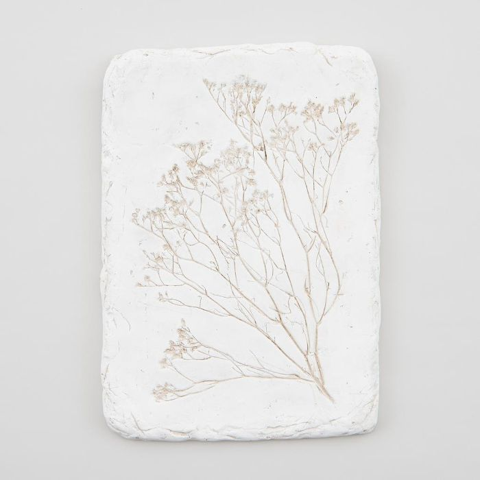 Magnolia Pressed Flower Plaque