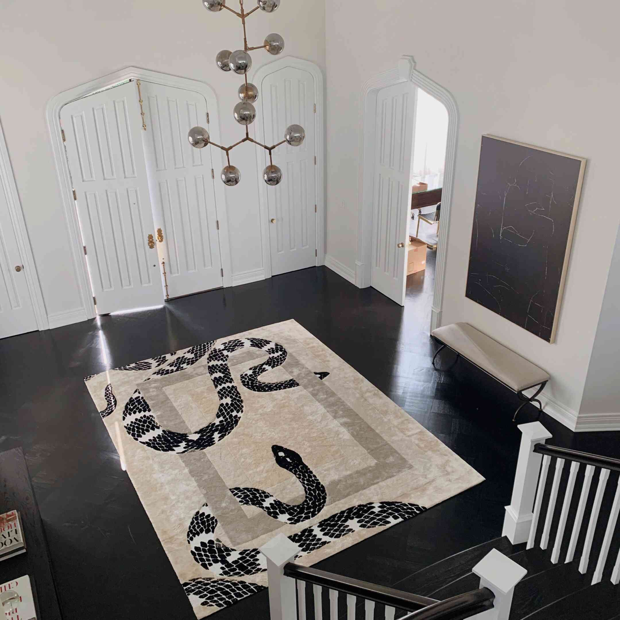 entryway with large area rug that has print of two snakes on it