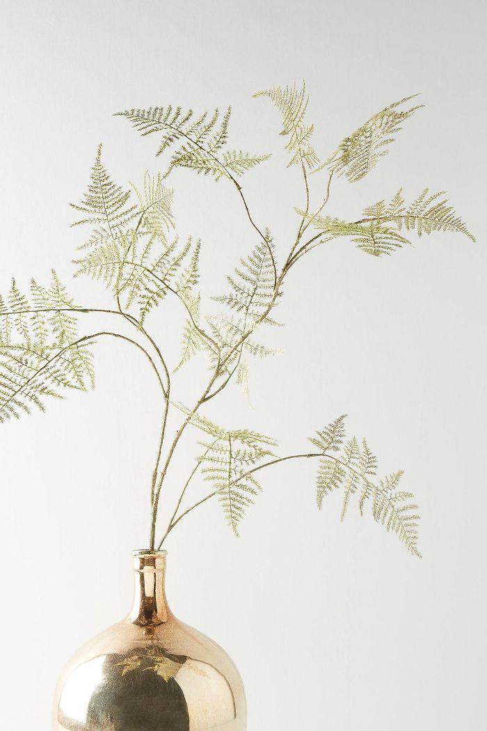 Gold Asparagus Spray