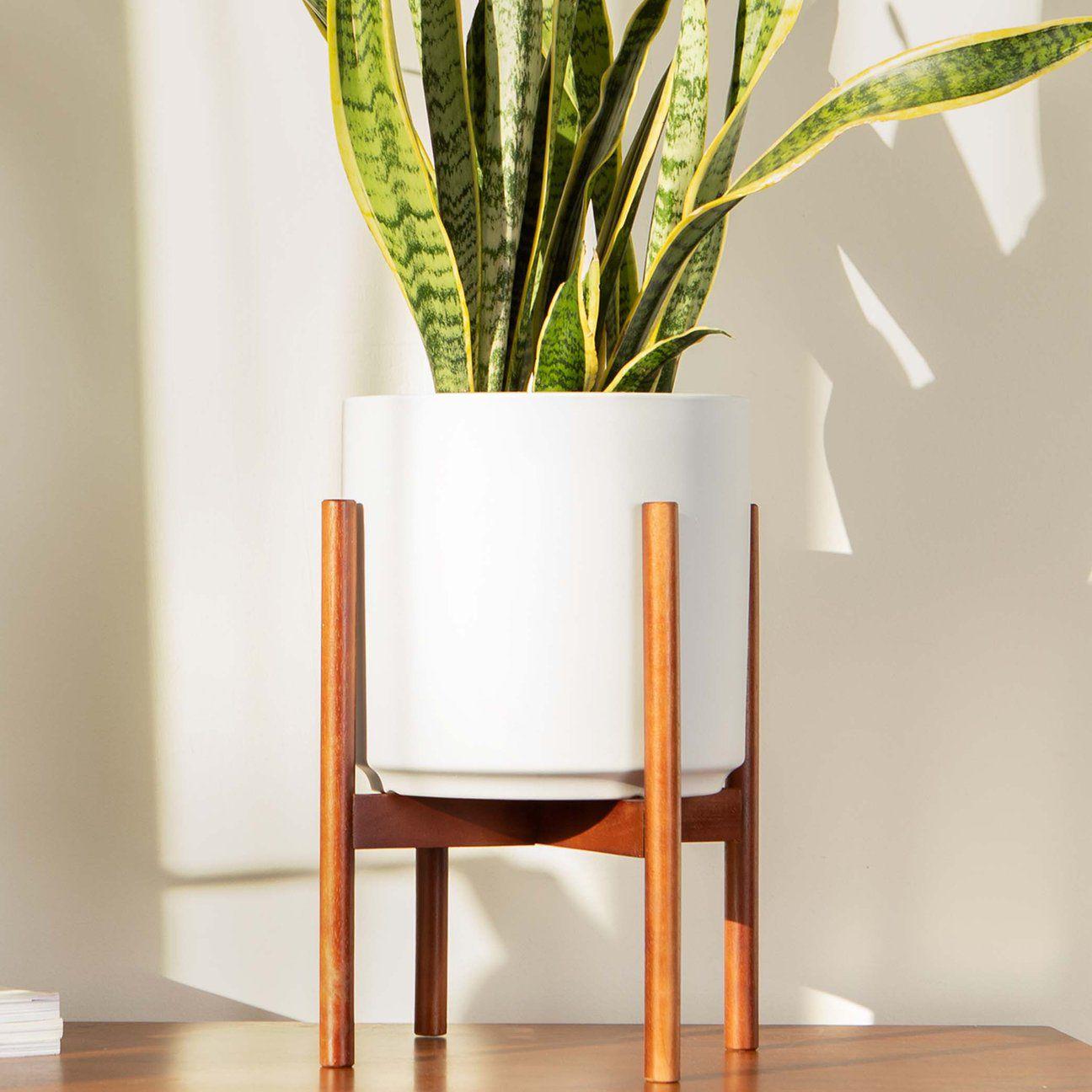 ceramic planter & wood stand set