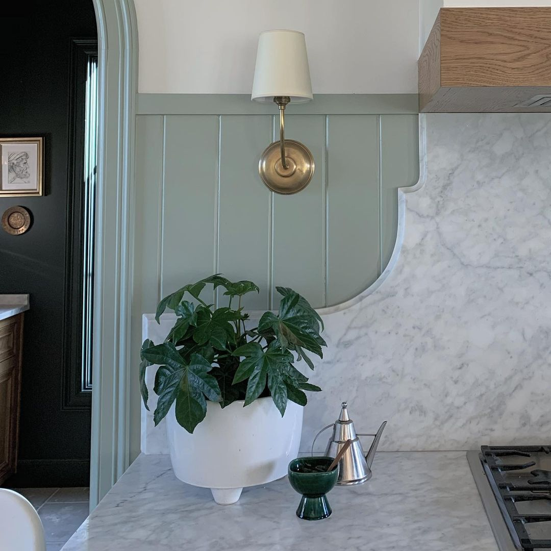 Marble countertops and plant