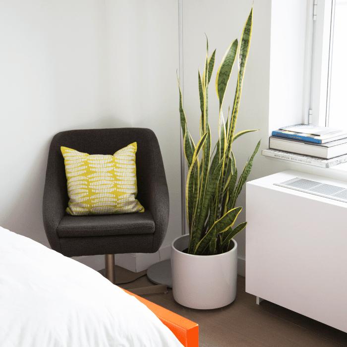 Recorrido por los apartamentos de Williamsburg: silla y planta