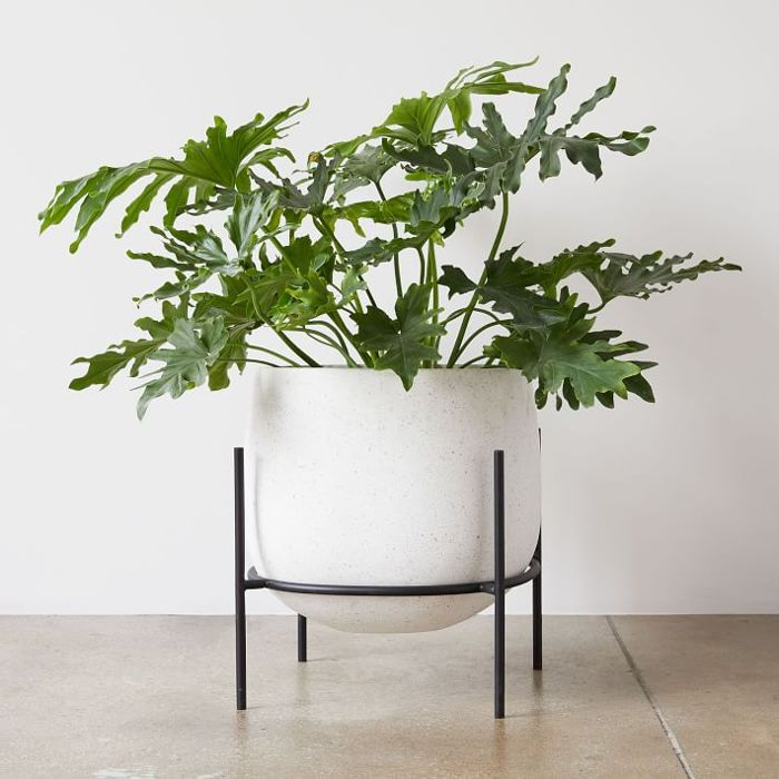 West Elm Stratus Large Short Standing Planter
