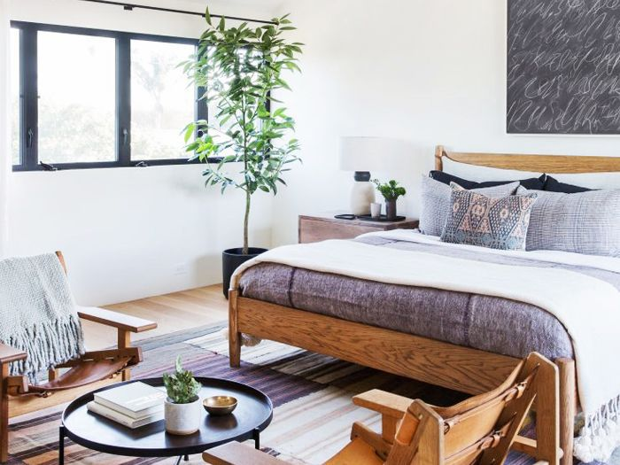The Best Plants For Bedrooms Will Help You Sleep Better