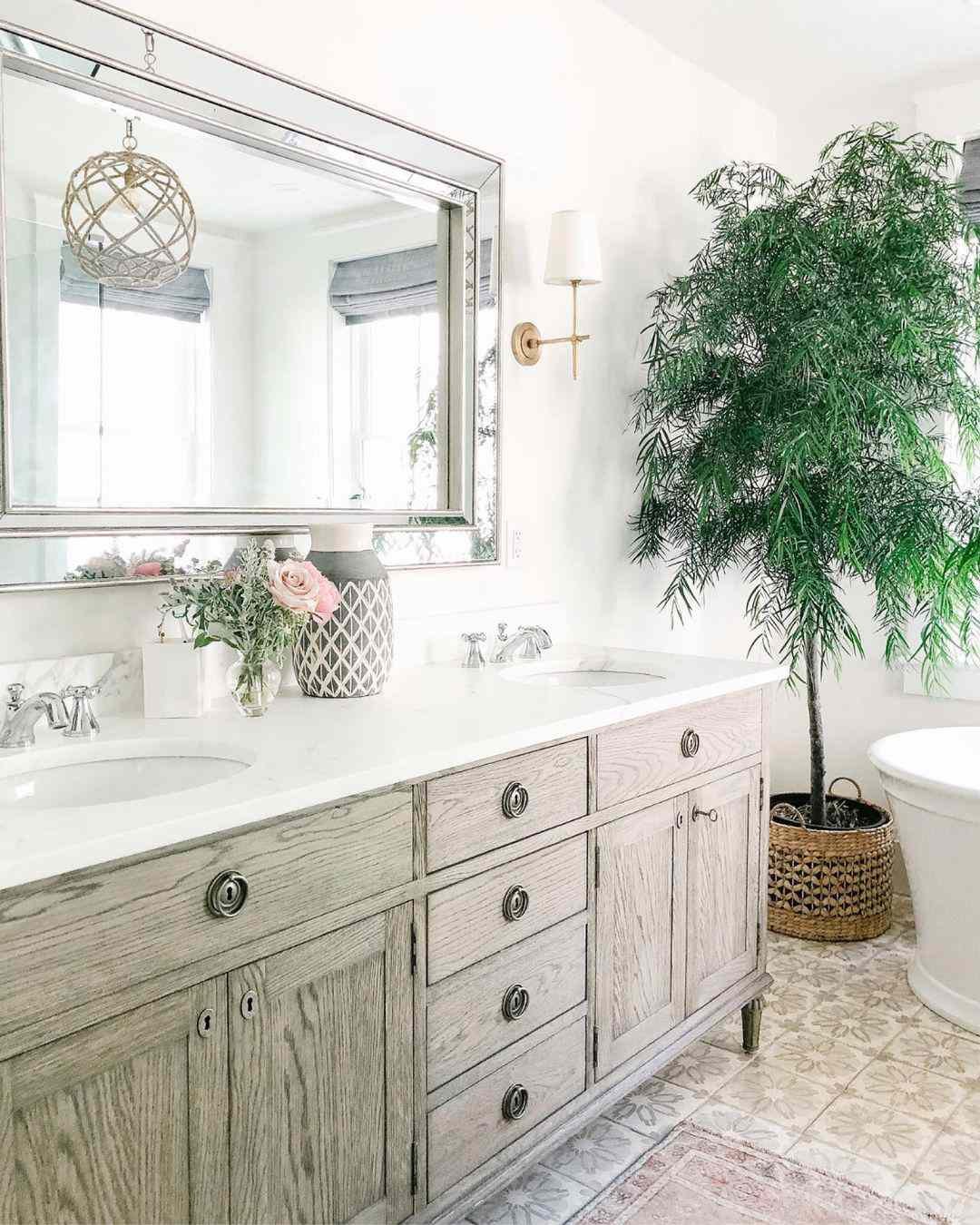 Yew pine in bathroom