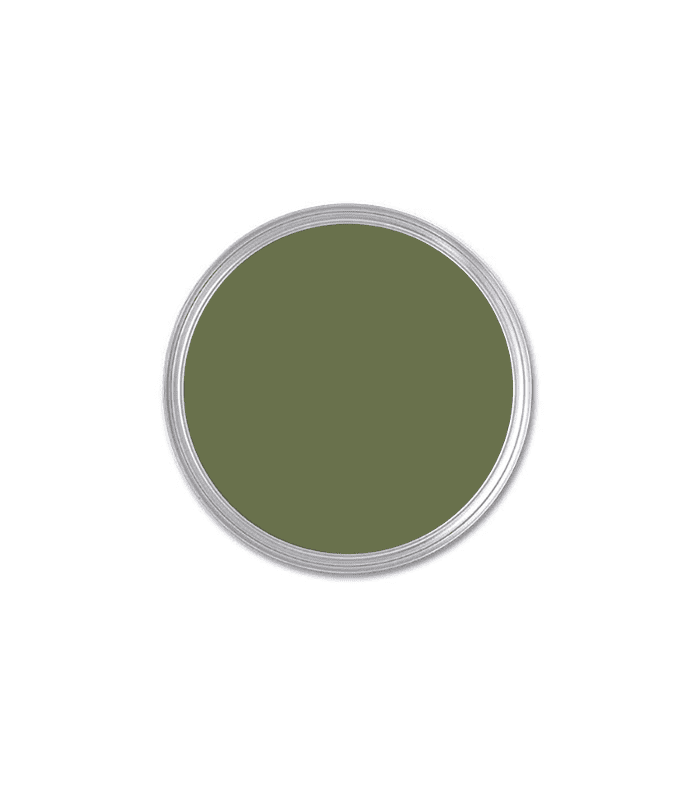 Glidden Essentials Afternoon Martini Olive Eggshell Interior Paint Best Home Depot Paint Colors