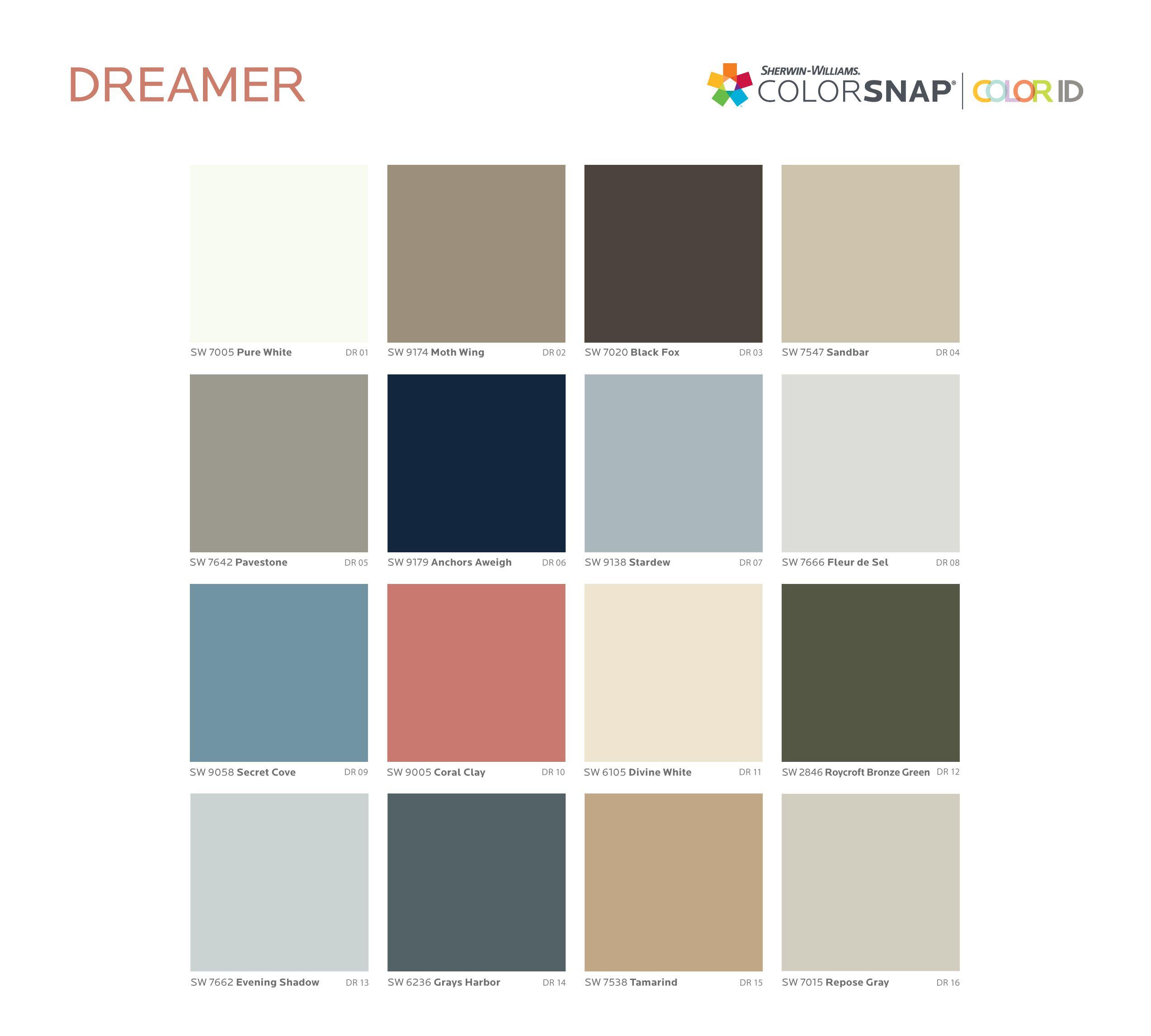 Dreamer paint color palette