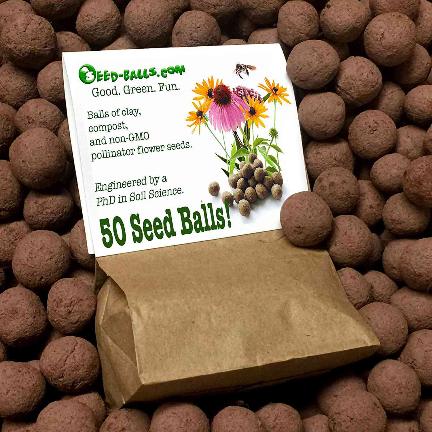 US Native Wildflower Seed Bombs for Pollinators