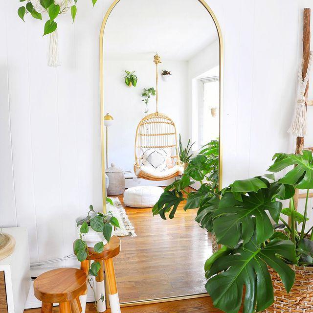 Monstera plant in a boho living room