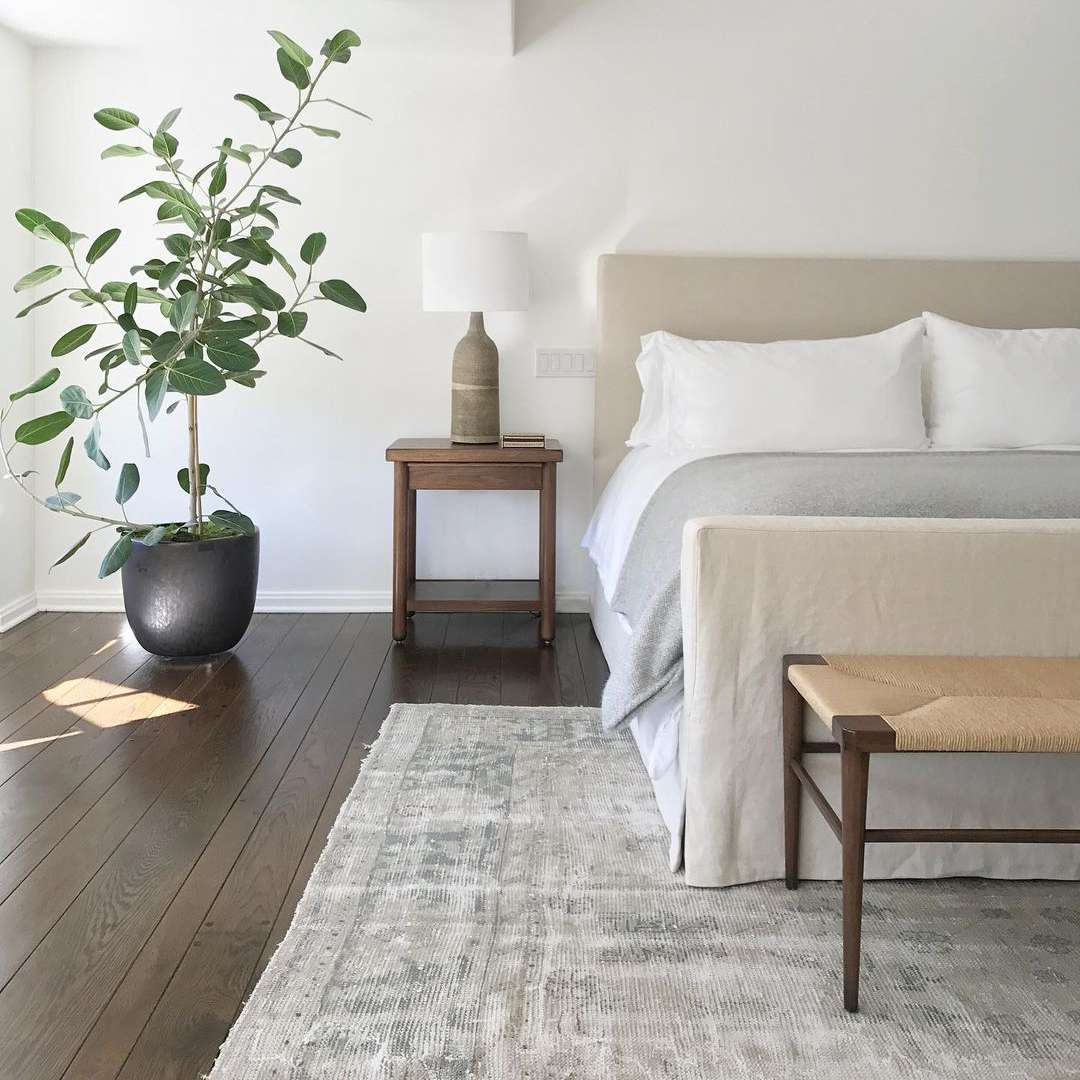 Bedroom with plant in the corner