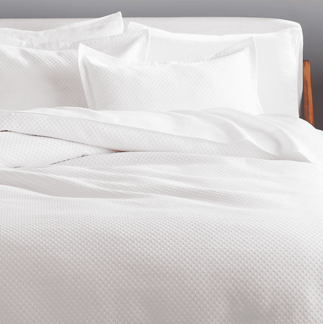 dotted bedding