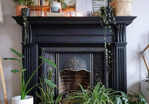Black fireplace with plants