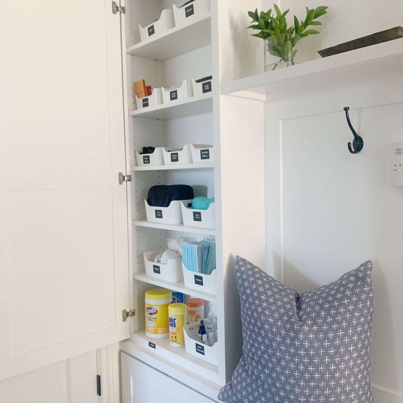 hall closet with small bins