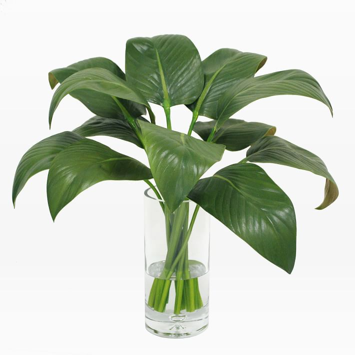 A grouping of artificial calla lily leaves in a clear vase full of fake water.