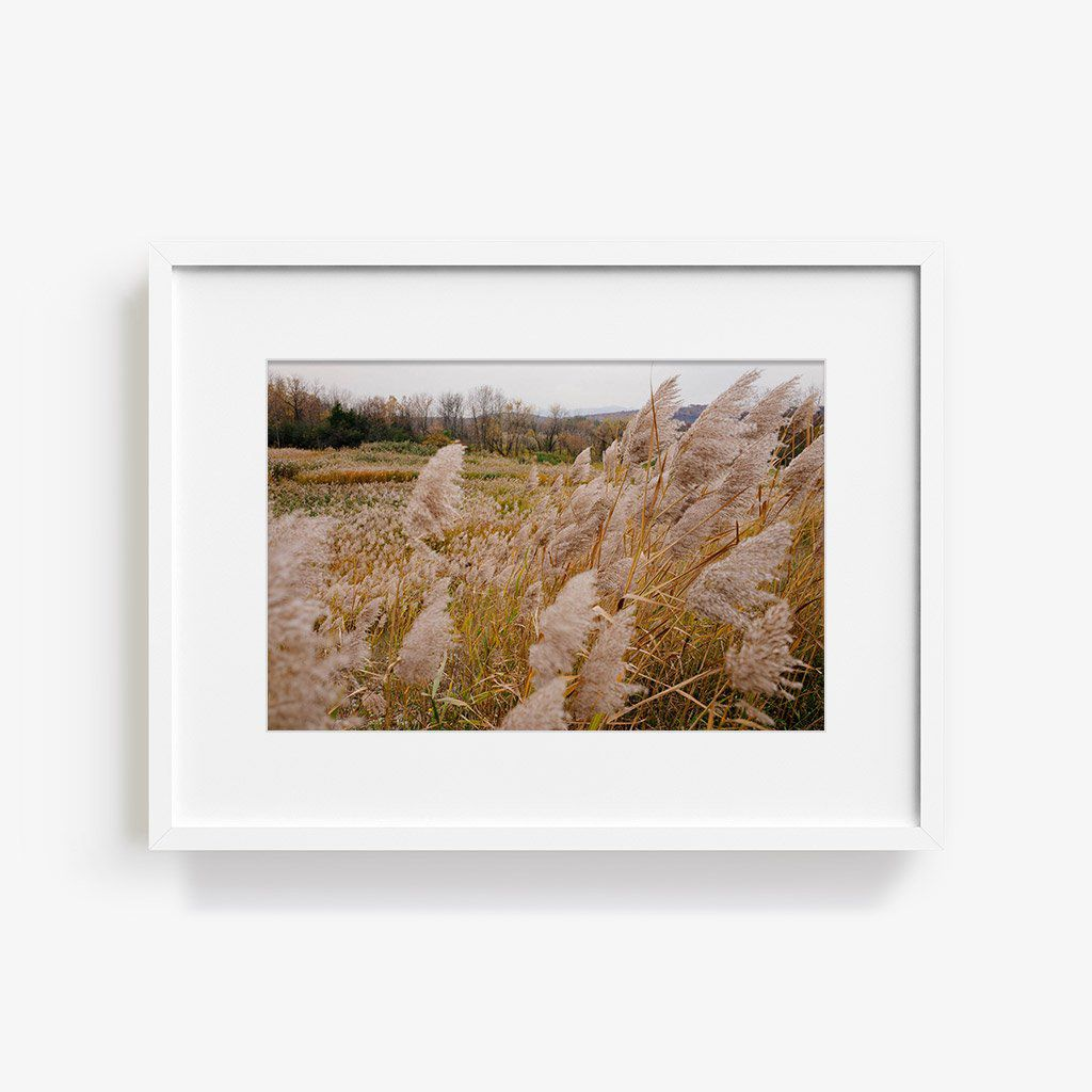 Tappan Marc Gabor Hudson Valley photograph