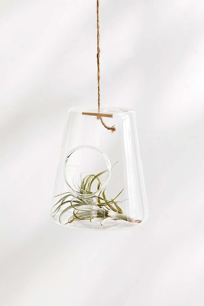 Isosceles Hanging Terrarium