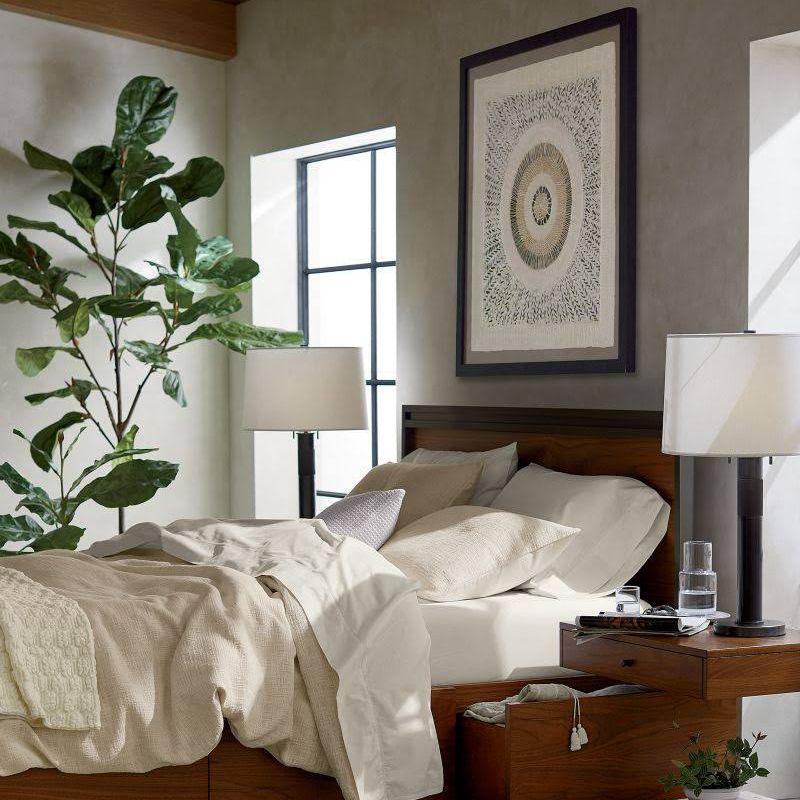 Un higo de hoja de violín en un dormitorio