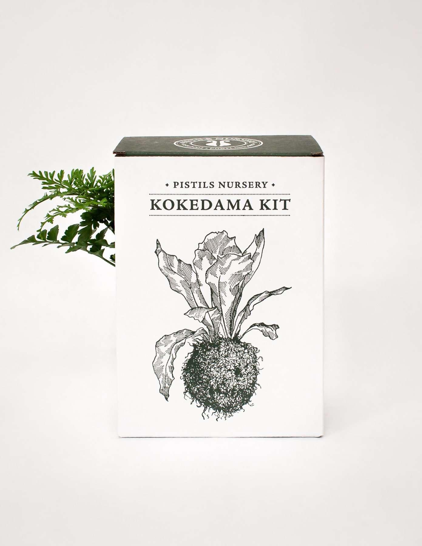 Pistils Garden Kokedama Kit