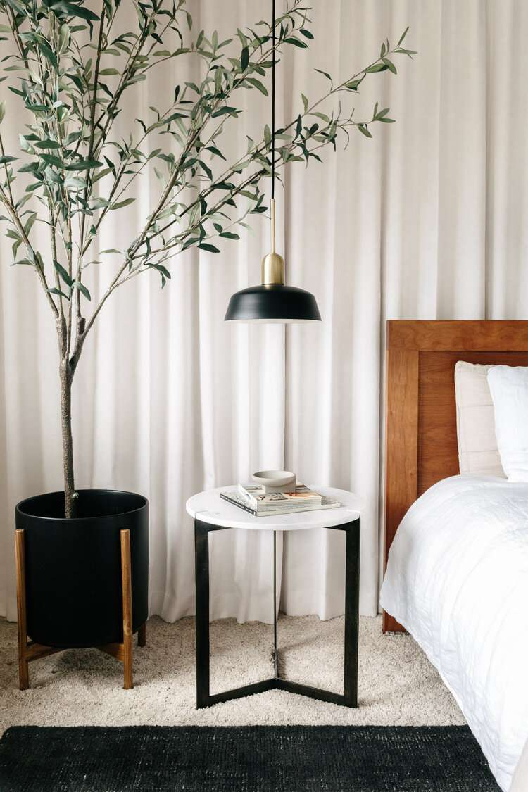 how to bring plants indoors for winter - tree next to bed in sleek bedroom