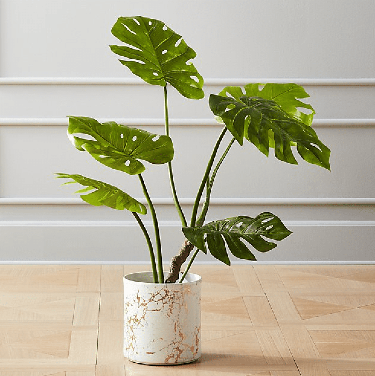 CB2 Faux Monstera Plant