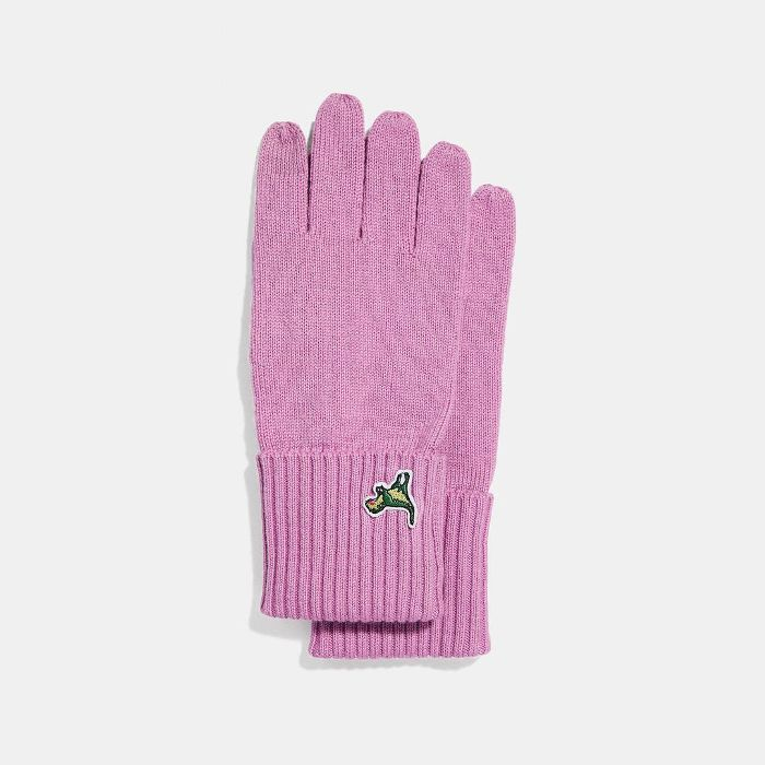 Coach Knit Tech Rexy Gloves