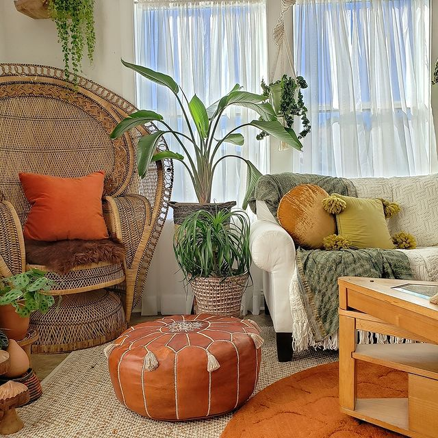 Bird of paradise and ponytail palm next to a peacock chair in a boho living room