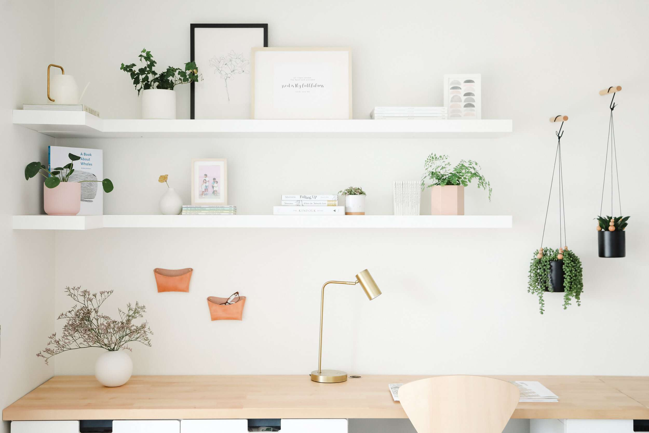Office with white walls and hanging plants