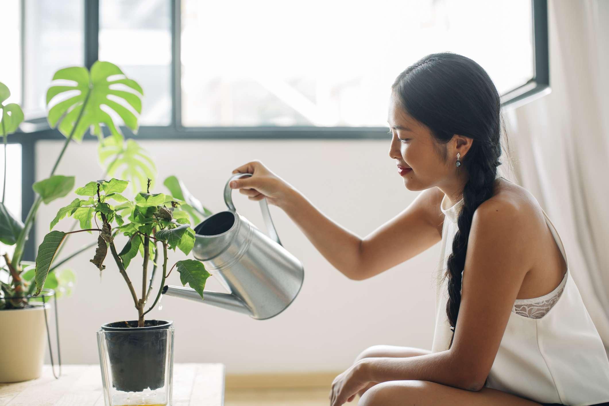 woman with houseplants
