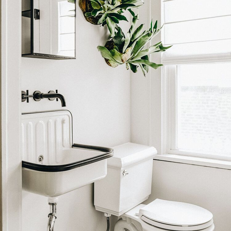 An all-white bathroom with a plant on the wall