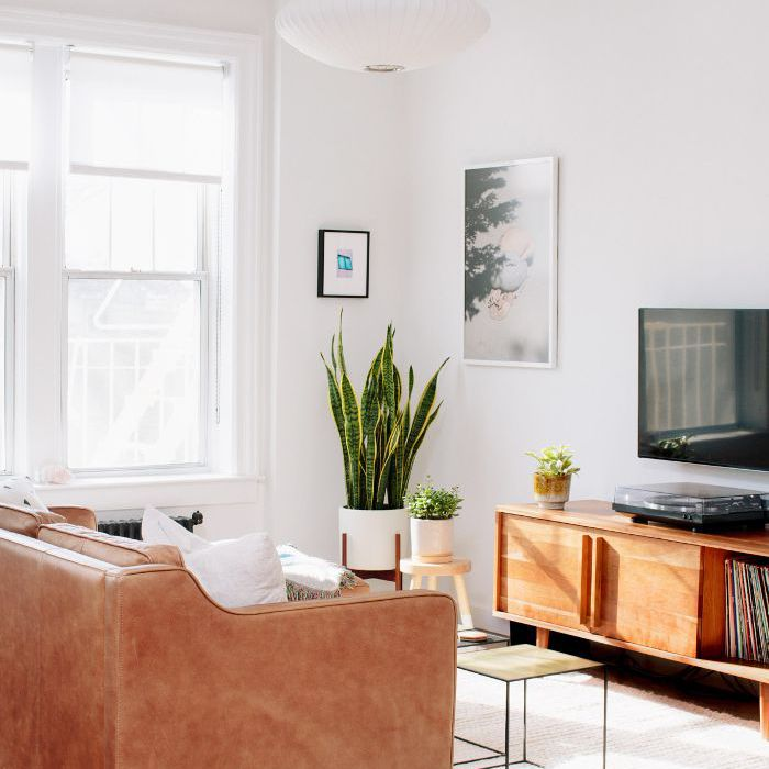 10 Modern Apartment Decor Ideas To Suit Any Size Space