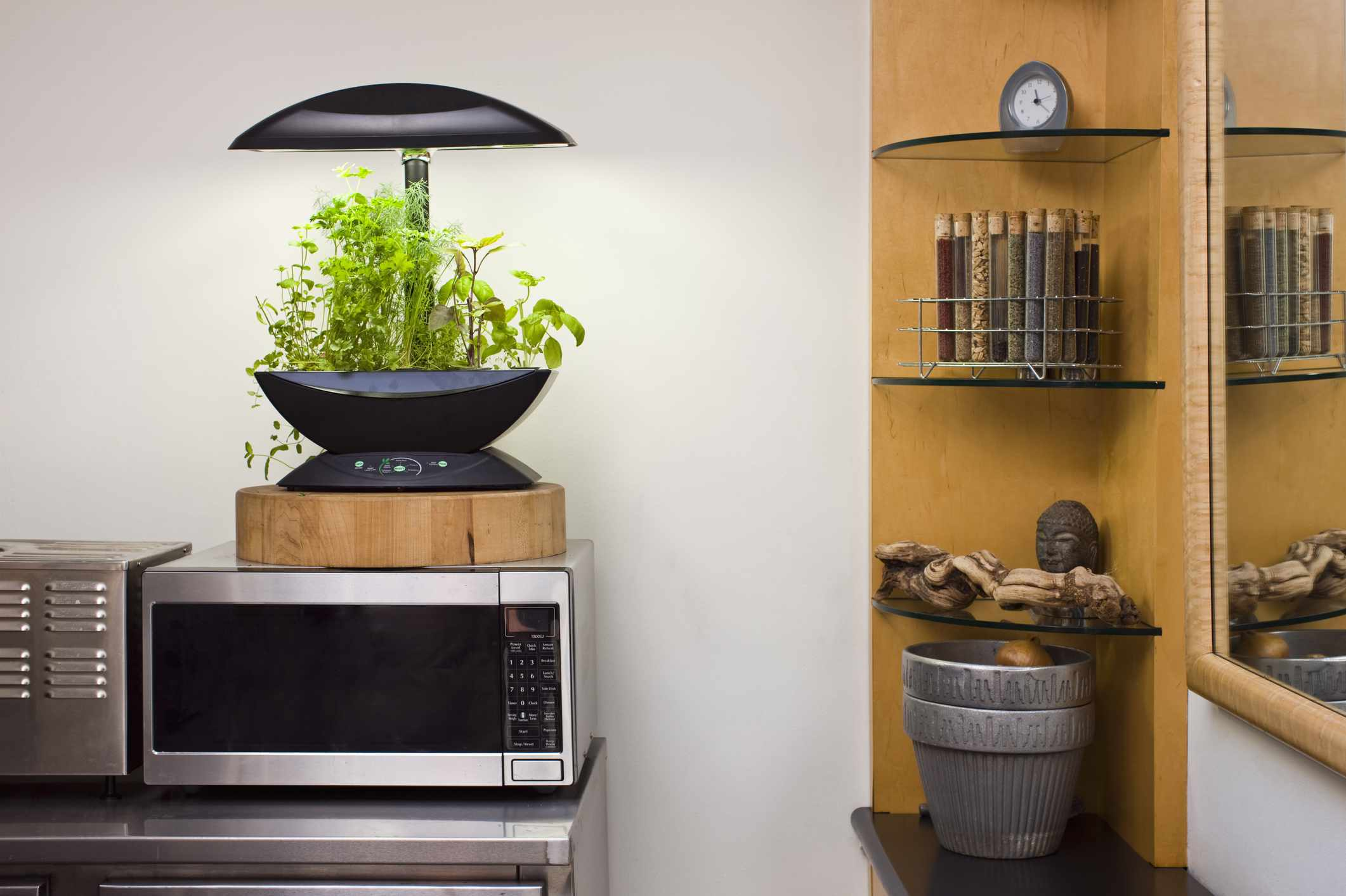hydroponic LED herb garden kit on top of microwave in kitchen