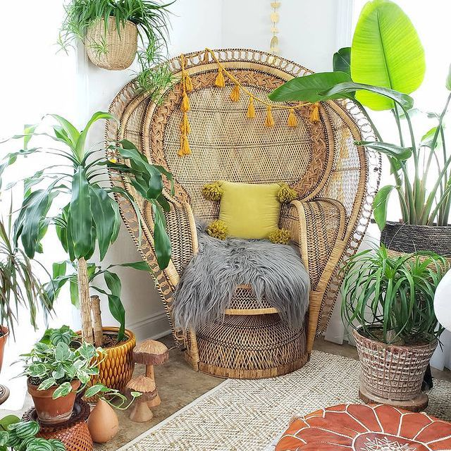 Bird of paradise and various plants around a peacock chair in a boho sunroom