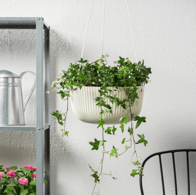 ÄPPELROS Hanging Planter