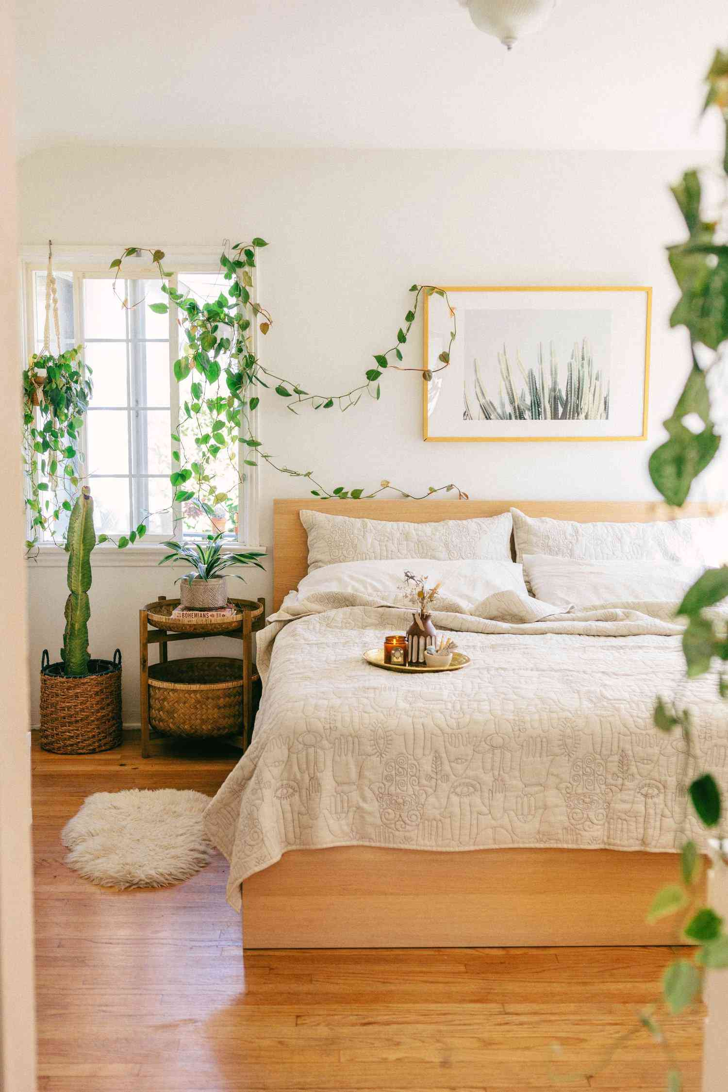 Pothos in a light and airy bedroom