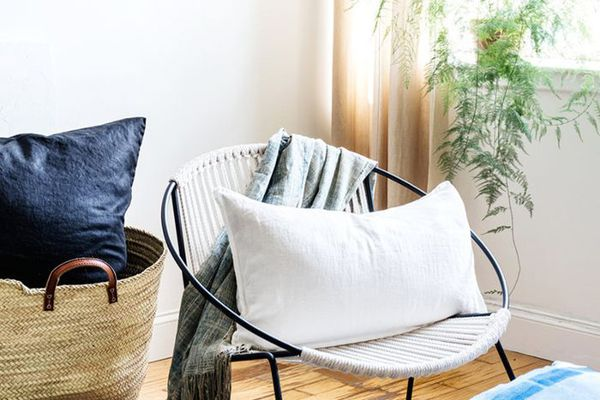 modern living room with side chair, throw pillows, and a house plant