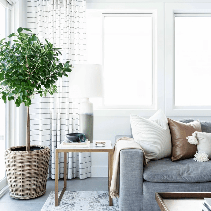 Living space with a striped curtain