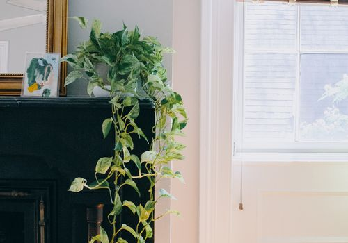 Amanda Greeley home tour - mantel and blinds in living room