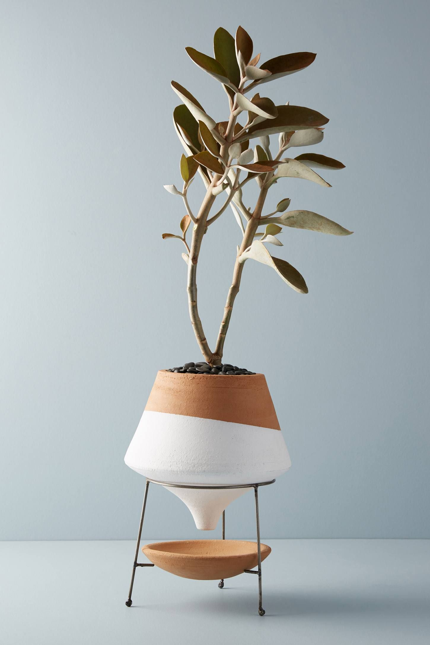 Plant Stand—Cheap room decor
