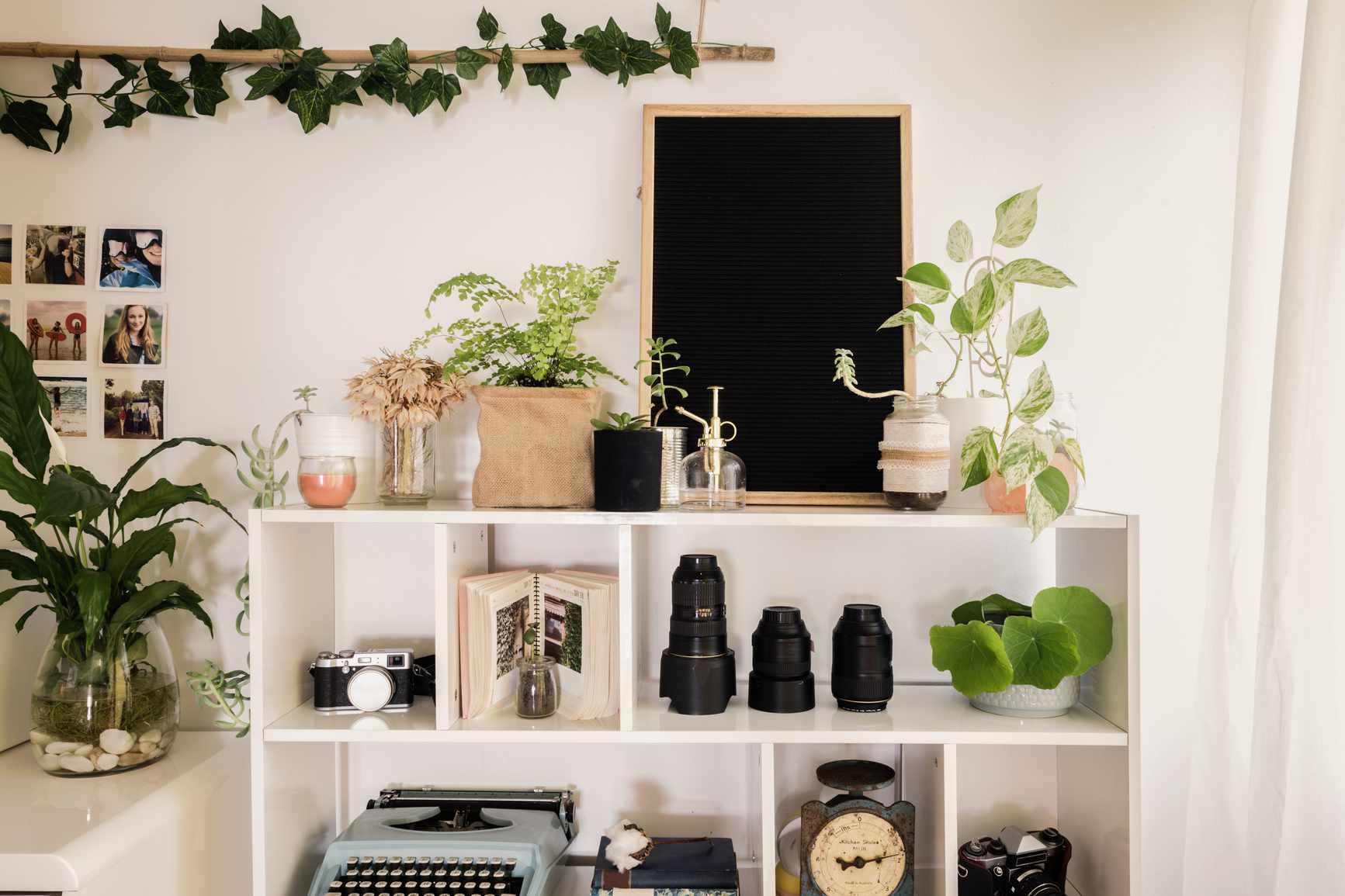 thrifted home decor items on shelf