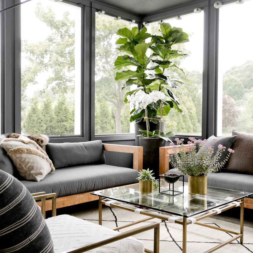 Sunroom with sofas and plants.
