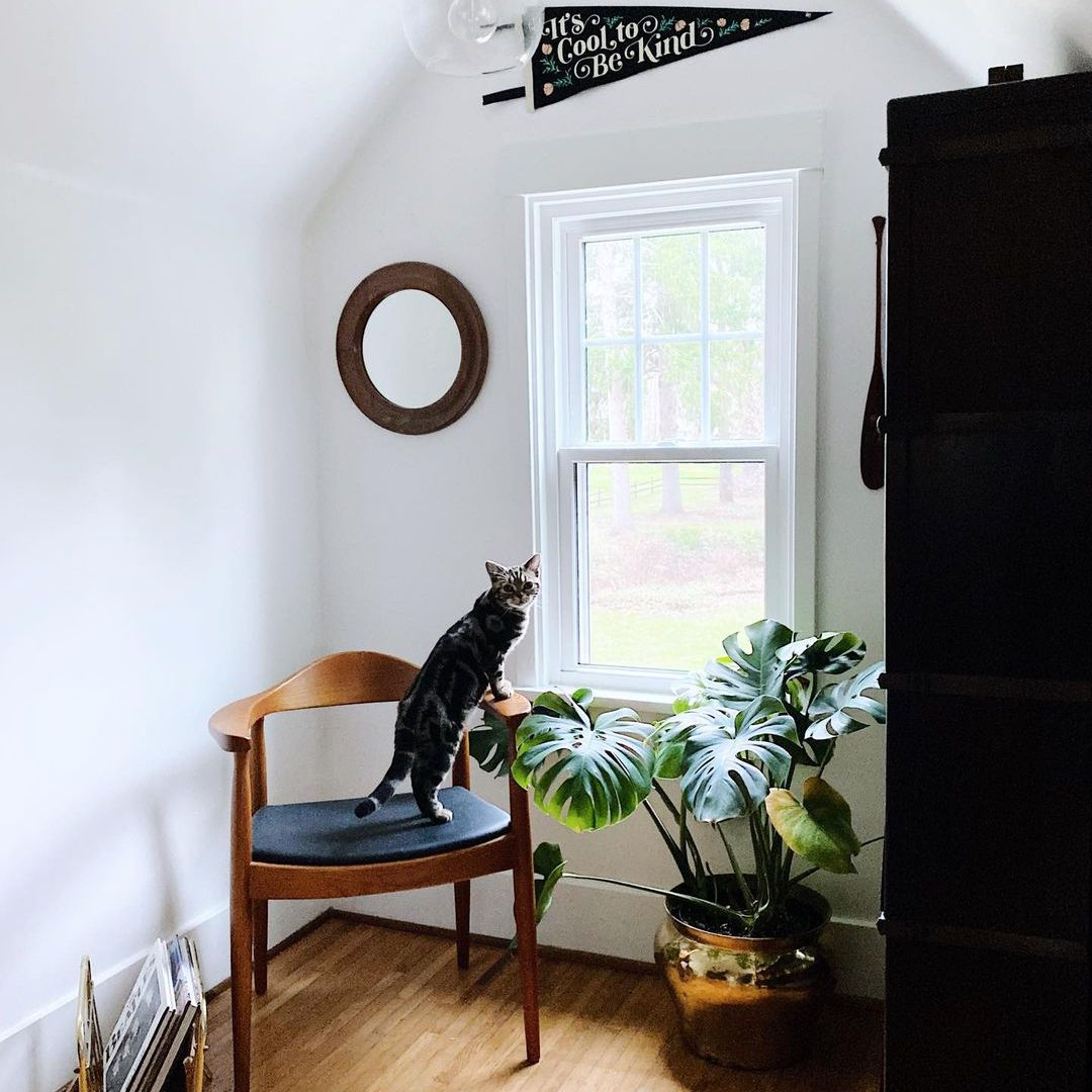 Cozy window seating area featuring a