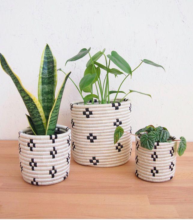 Maraba Planter Baskets