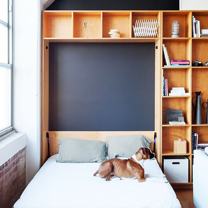 un perro sentado en una cama
