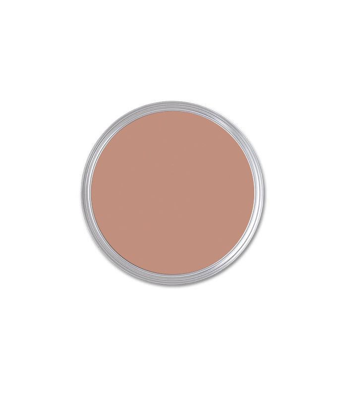 paint color Roycroft Rose by Sherwin-Williams