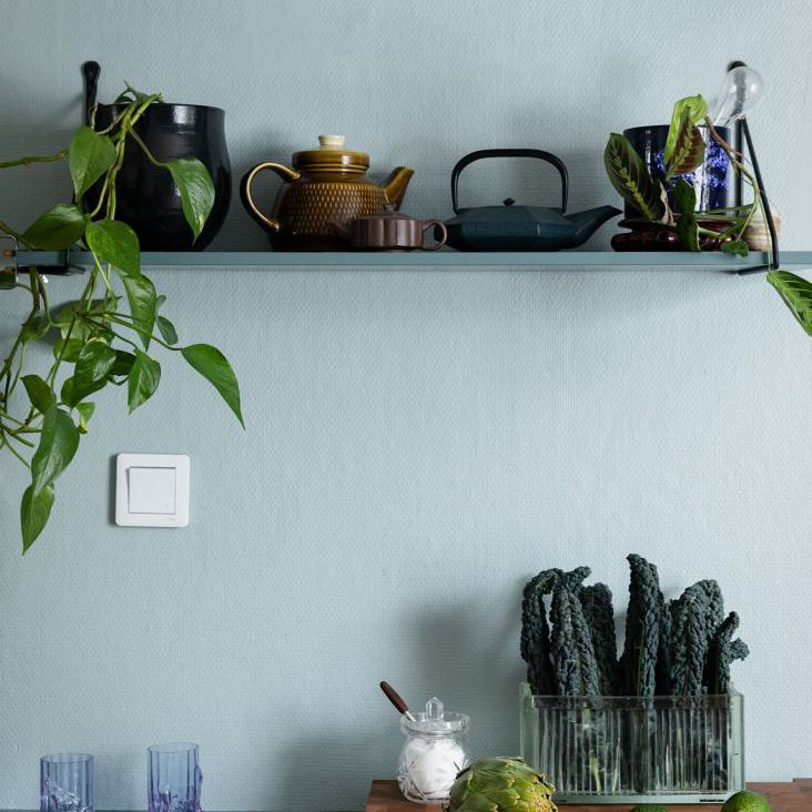 Pothos on open kitchen shelves