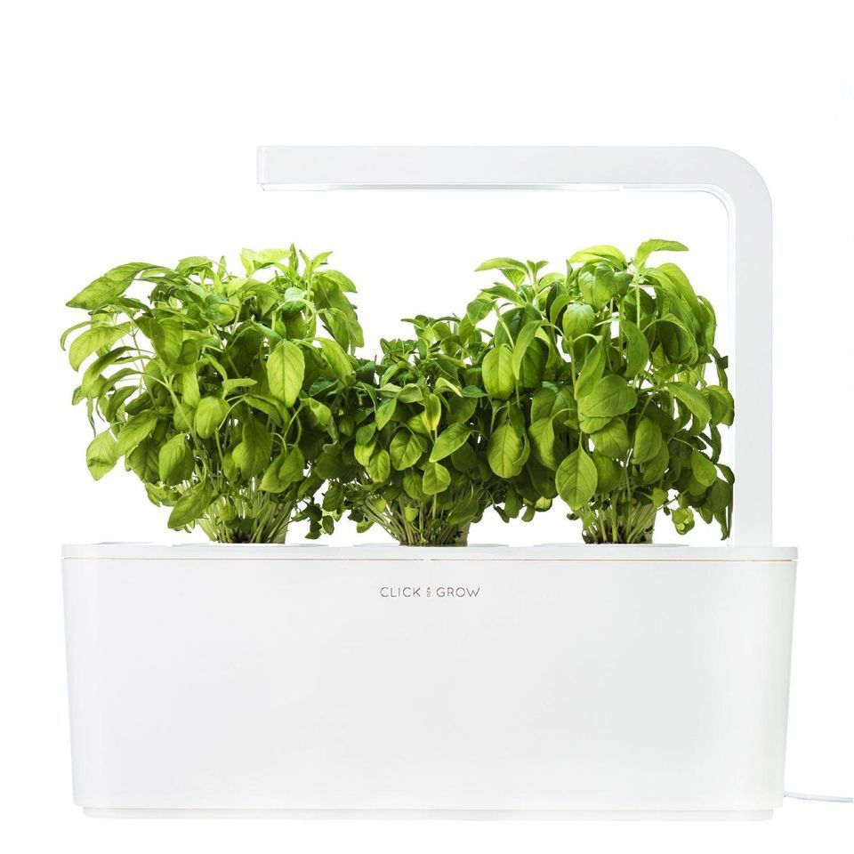 Click & Grow Indoor Smart Fresh Herb Garden Kit With 3 Basil Cartridges & Orange Lid   Self Watering Planter & Patented Nano-Tech Medium For Plant Growth