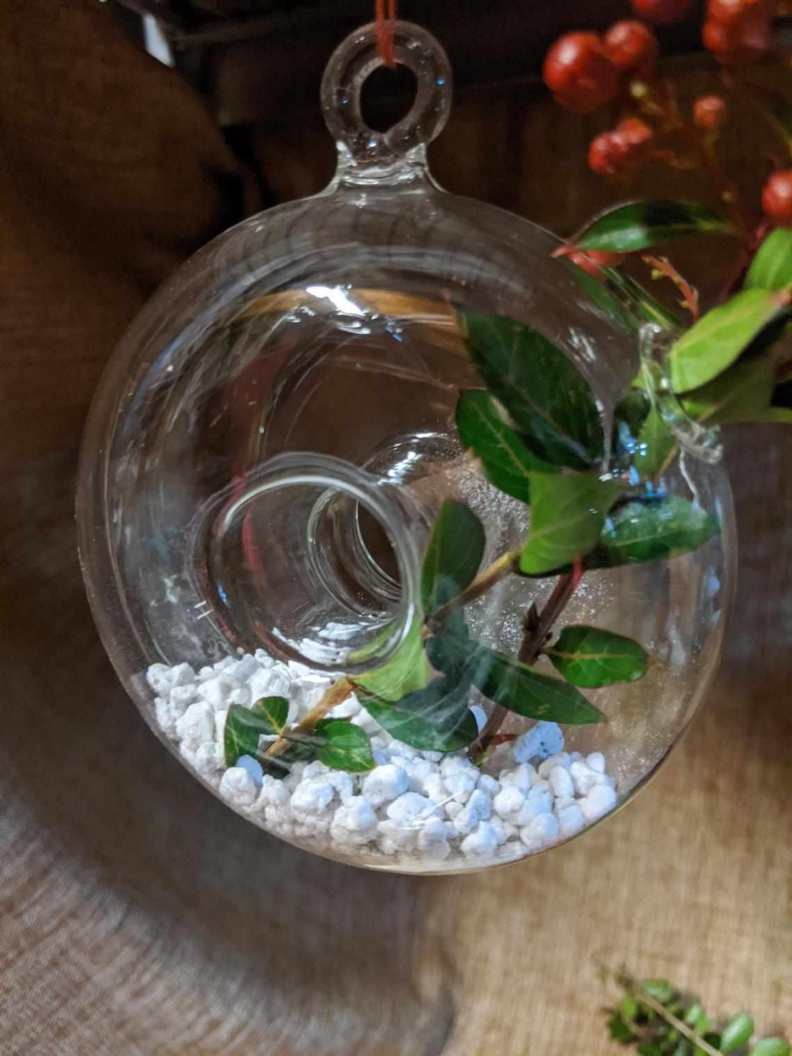 Donut shaped Glass hanging vase